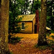 thoreaus-cabin
