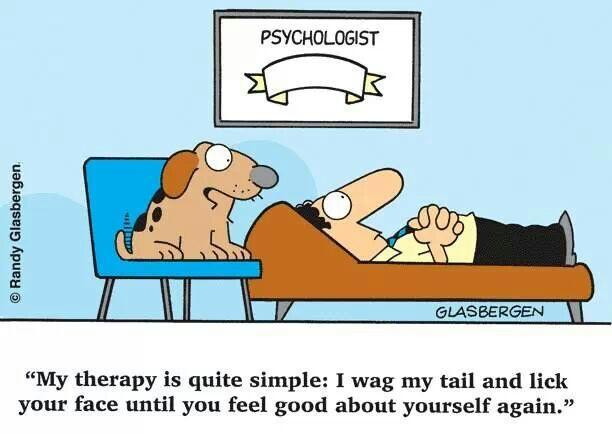 dogtherapist